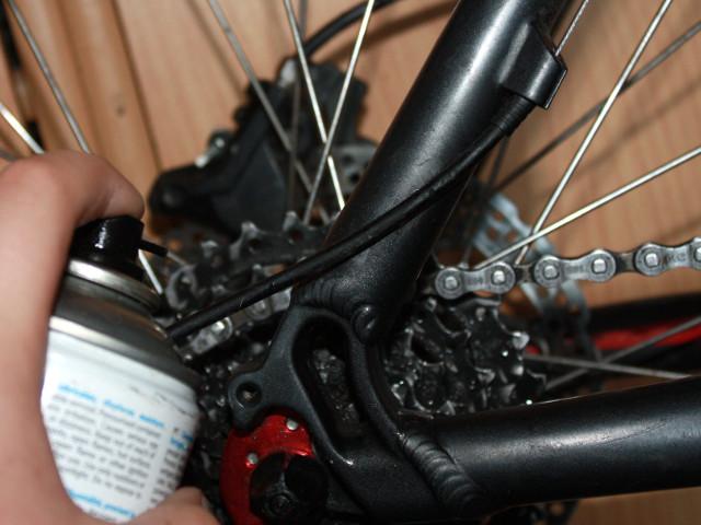 Fahrradkette und Kettenblatt fetten