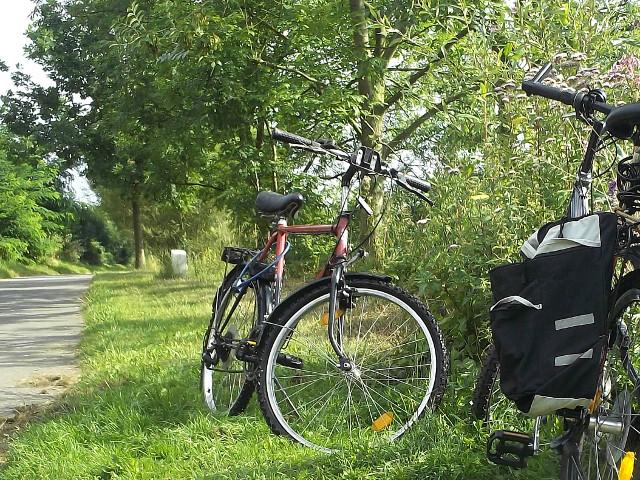 Mit dem Fahrrad durch den Harz