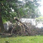 Sturmschäden Tief Ela