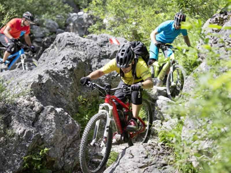 Profi-Fahrer beim Mountainbiken